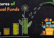 What are the Features of Mutual Funds?